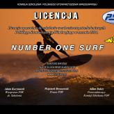 Licencja PSW 2014